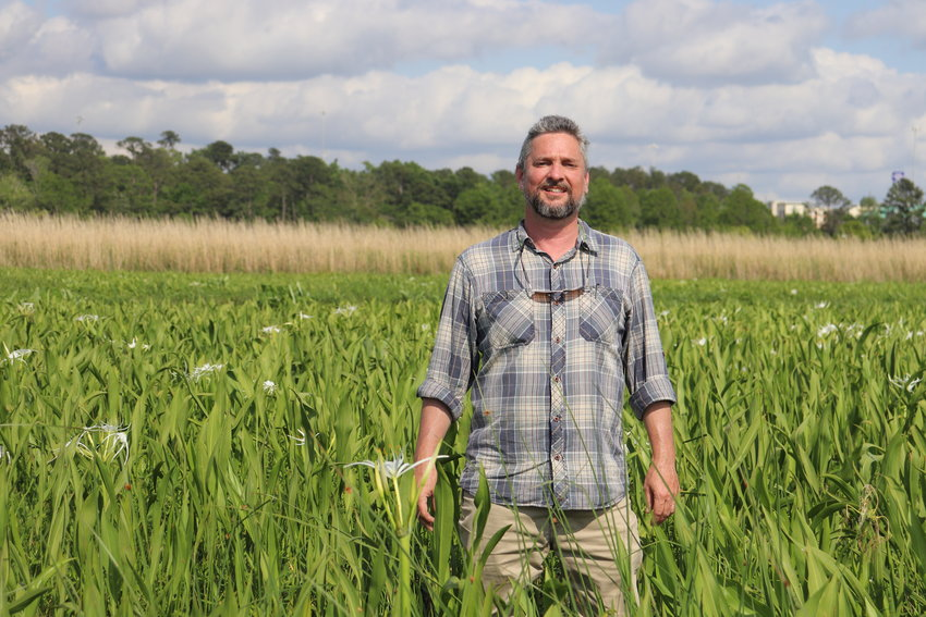 Ben Raines, of Fairhope, steps down into the grasses of the Delta. His latest book explores Alabama's unusual biodiversity and aims to inspire residents to help preserve it.