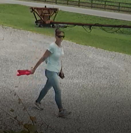 The Baldwin County Sheriff's Office is asking for help in identifying a suspect they say broke into a Magnolia Springs area business twice, removing items both times.