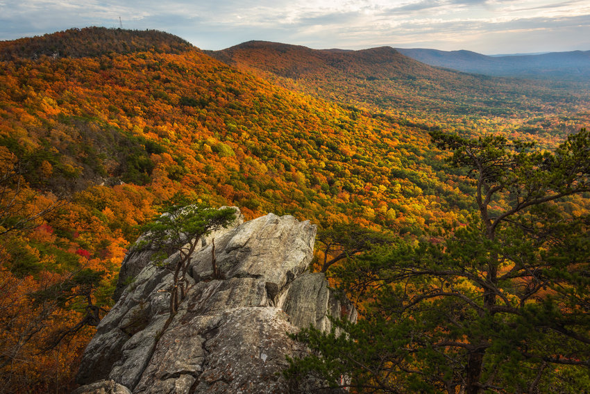 This photo of Cheaha State Park by Keith Bozeman took 1st Place in the State Parks Category of the 2021 Outdoor Alabama Photo Contest.
