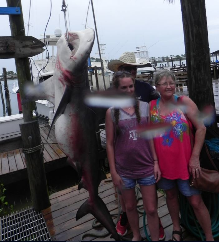 Donna Edgar and Michelle Pogue pose with the 6-foot bull shark.