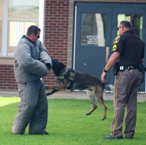 Deputy Jason Kolbe is on the receiving end, apprehended by Sgt. Randy Younce and his canine partner Troy during a demonstration Wednesday at the 2017 Baldwin County Sheriff's Office Shining Star Youth Camp held at Magnolia School.