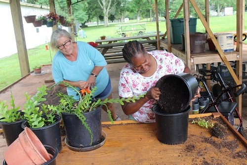 Charlene Sullivan supervises a potting operation.