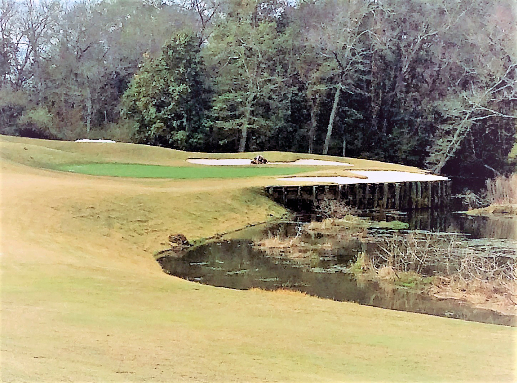 Many of the newly renovated Dogwood holes have a more open approach while maintaining challenging hazards.