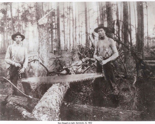 Ben Stegal on right sawing a large log with cross-cut saw at Southern States Logging camp.