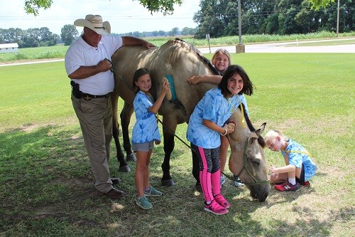 Campers at Central Baldwin Middle School get up close and personal July 25 with an equine member of the Baldwin County Sheriff's Office Mounted Posse aided by Capt. Darren Williamson.