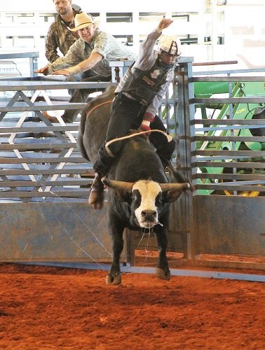 Bull riding is one of the more popular events at the rodeo.