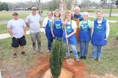 Pictured, town employees Andrew Wilson and Austin Keith, along with Baldwin County Master Gardeners Kay Smith, Marilyn Sides, Silverhill Tree Committee Chairman Carolyn Koch; Frank Rabino, Judi Smith and Tanys Waldron, oversee the tree planting. This is the 29th year Silverhill has been designated as a Tree City.