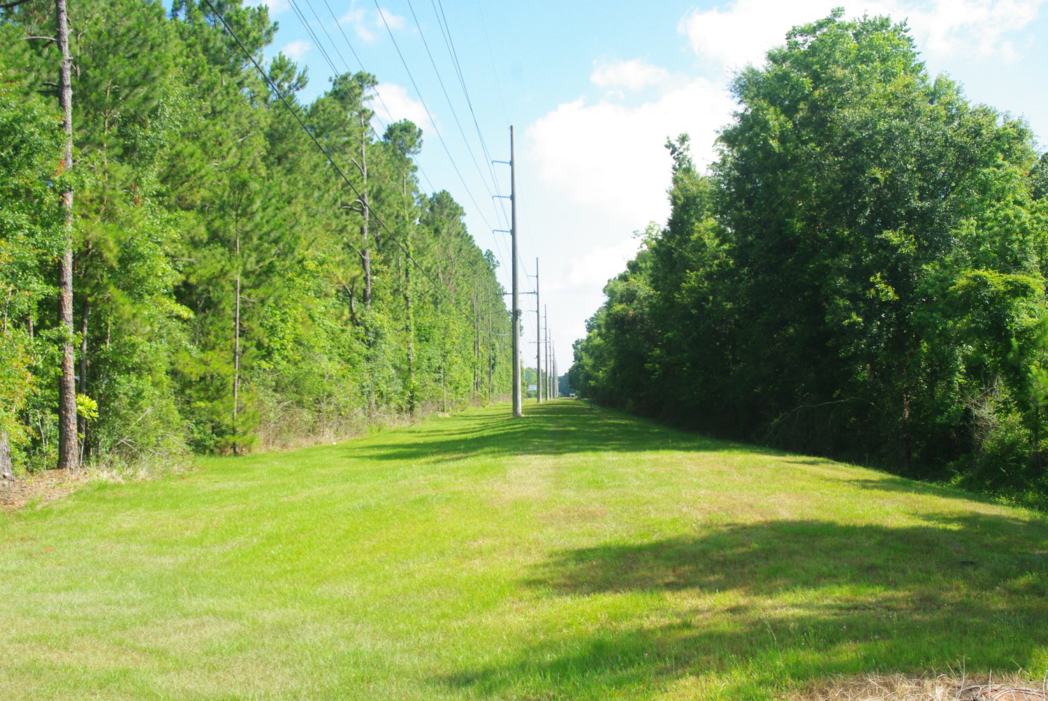 Railroad right of way in Baldwin County could become walking and cycling trails under national Rails to Trails program