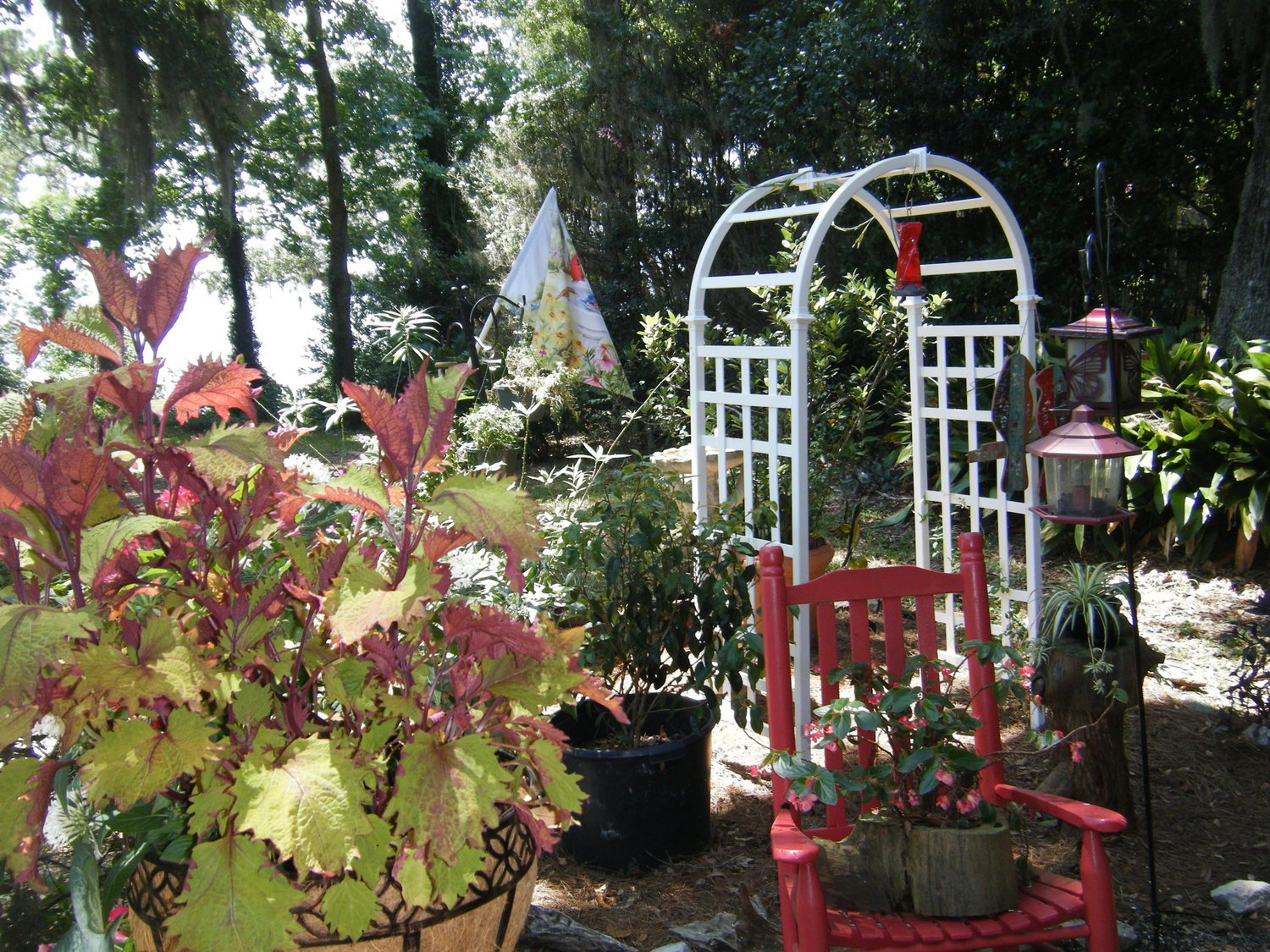 Through the Garden Gate: Imagine Your Outdoor Room With A