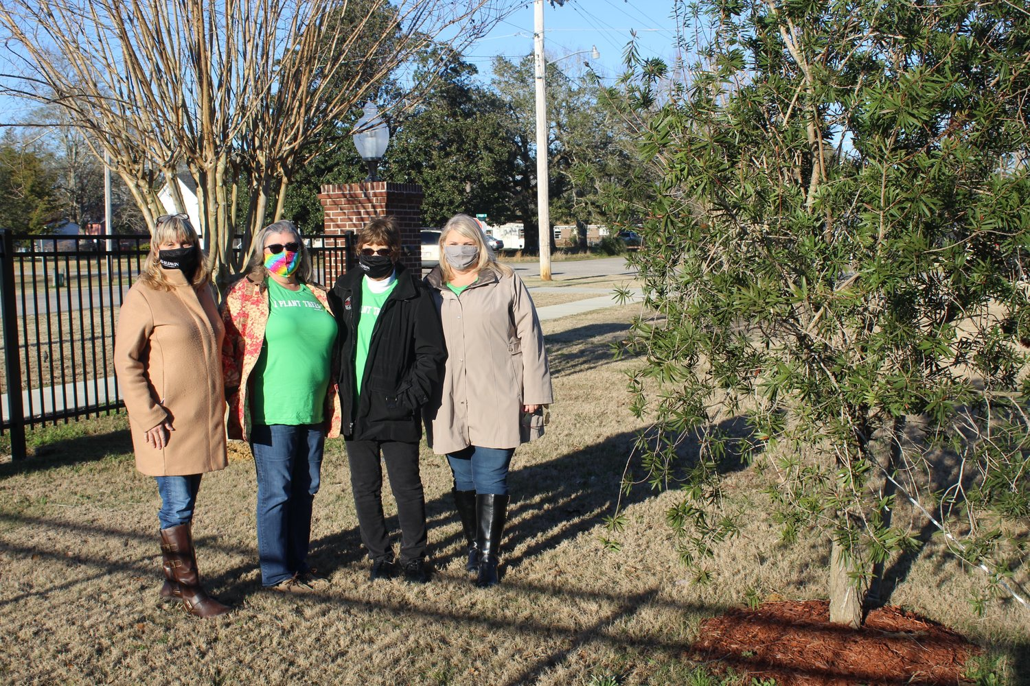 Members of the Robertsdale Park, Street and Tree Committee are pictured with one of this year's tree, a bottle brush. A second bottle brush tree was also planted in Honeybee Park for the annual Arbor Day celebration. Pictured are, from left, Ruthie Campbell, June Salac, Sue Cooper and Amanda Brill. Committee members not pictured are Chairman Sonja Connor, Cindy Adams, Nell Calloway and Jodee Darby.