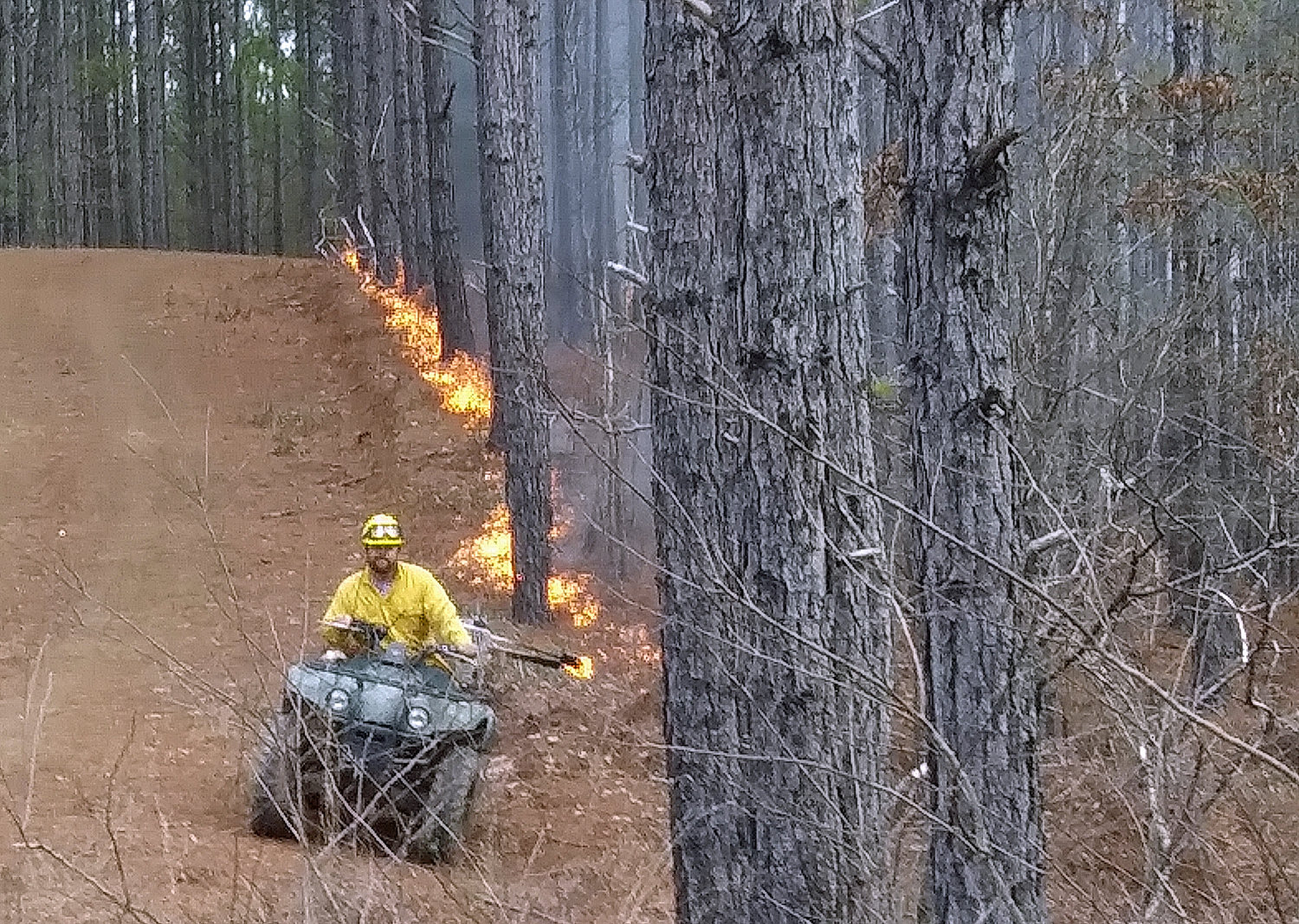 A drip torch is used to set a fire line on a section of land scheduled for a controlled burn.