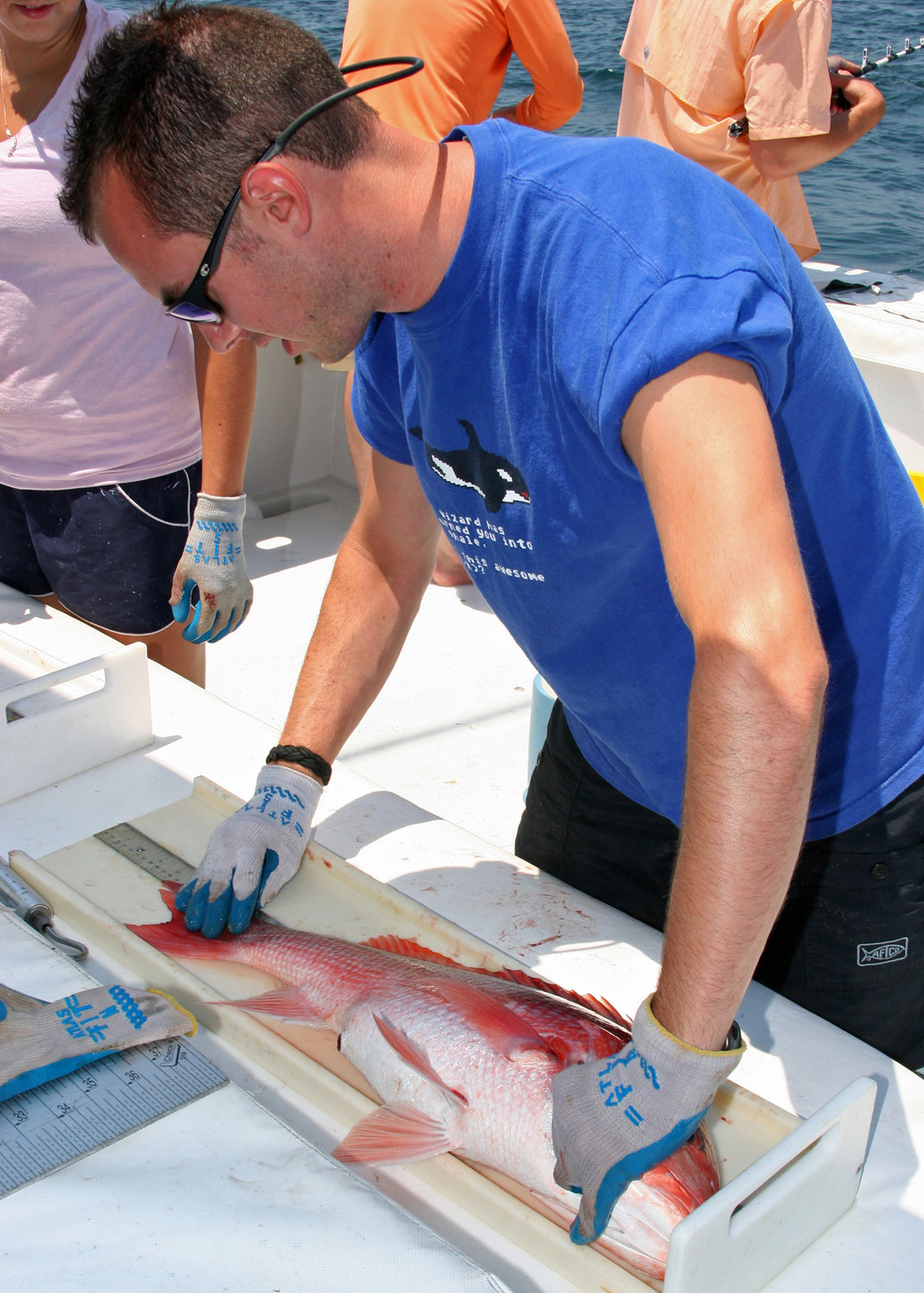 Alabama has been tagging red snapper as part of its research program for many years.