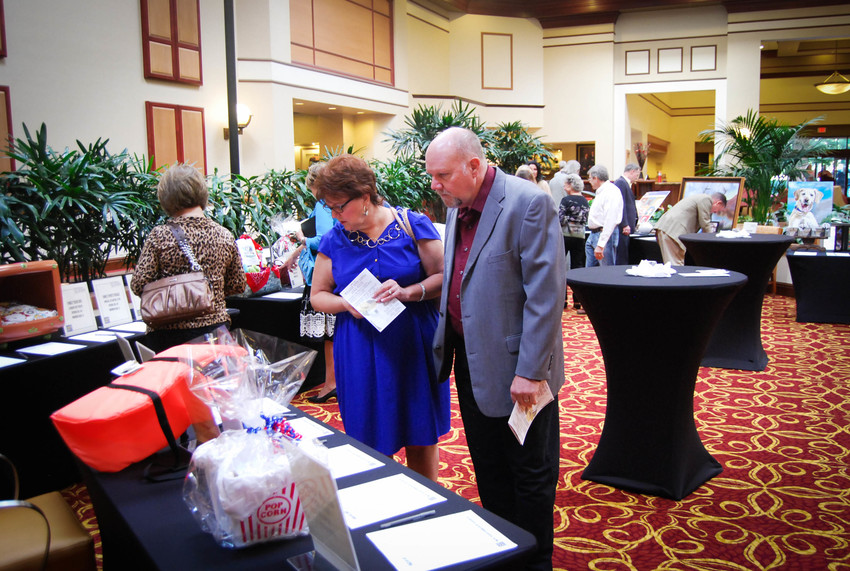 "Patrons look over silent auction items at the WilCo Regional Animal Shelter ""Fur Ball"". Funds from the event will go to help expansion efforts for the shelter."