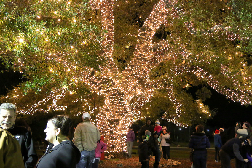 The annual Holiday Tree lighting in Cedar Park's Heritage Oak Park will feature carriage rides, games and Santa, Dec. 1.