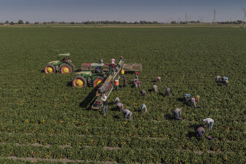 The 2014 farm bill expired on Sept. 30, frustrating lawmakers and those reliant upon its subsidies.