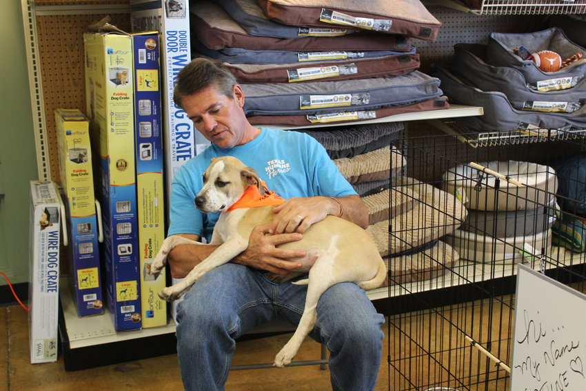 Gregg Newcombe, a volunteer with Texas Humane Heroes, holds Neptune — of the organization's young rescues — who is searching for his forever home. Pet adoptions are held every third Saturday at Tomlinson's Feed in Cedar Park.