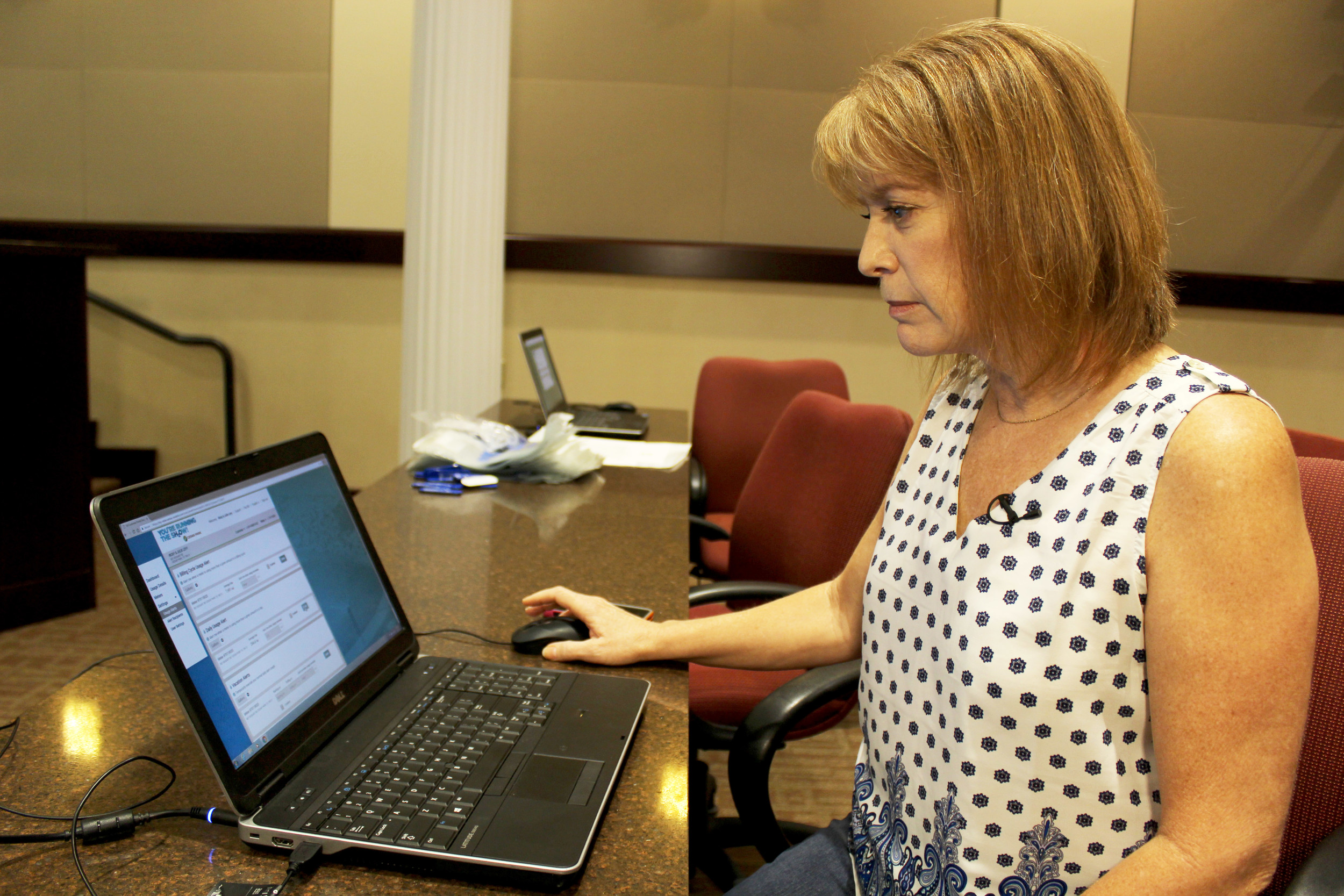 "Julie Levy, a Cedar Park resident, uses the city's water usage monitoring web portal, ""You're Running the SH2OW"" Monday, Aug. 14."