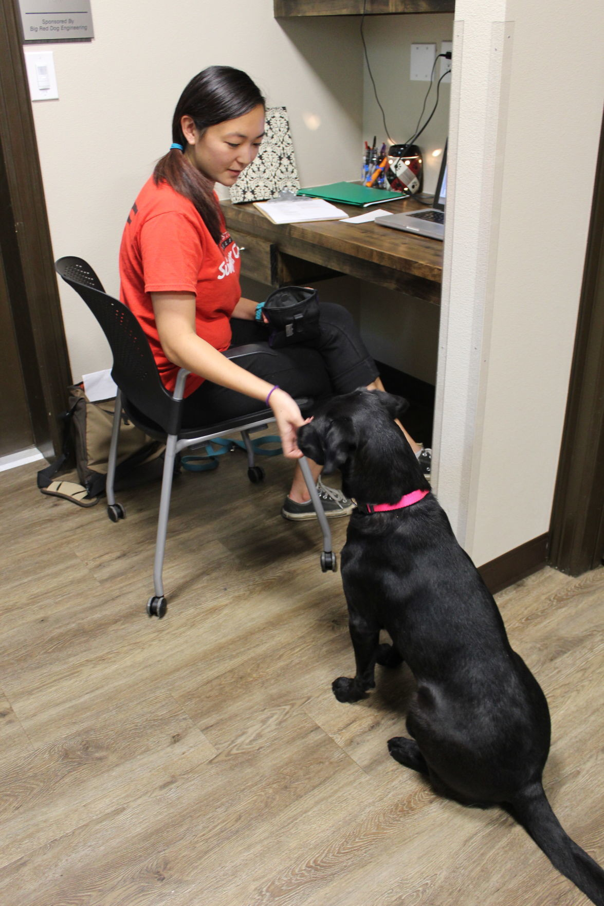 Danielle Calkins trains Dixie for service dog work, so Dixie will behave calmly and quietly underneath desks and tables for their owner.