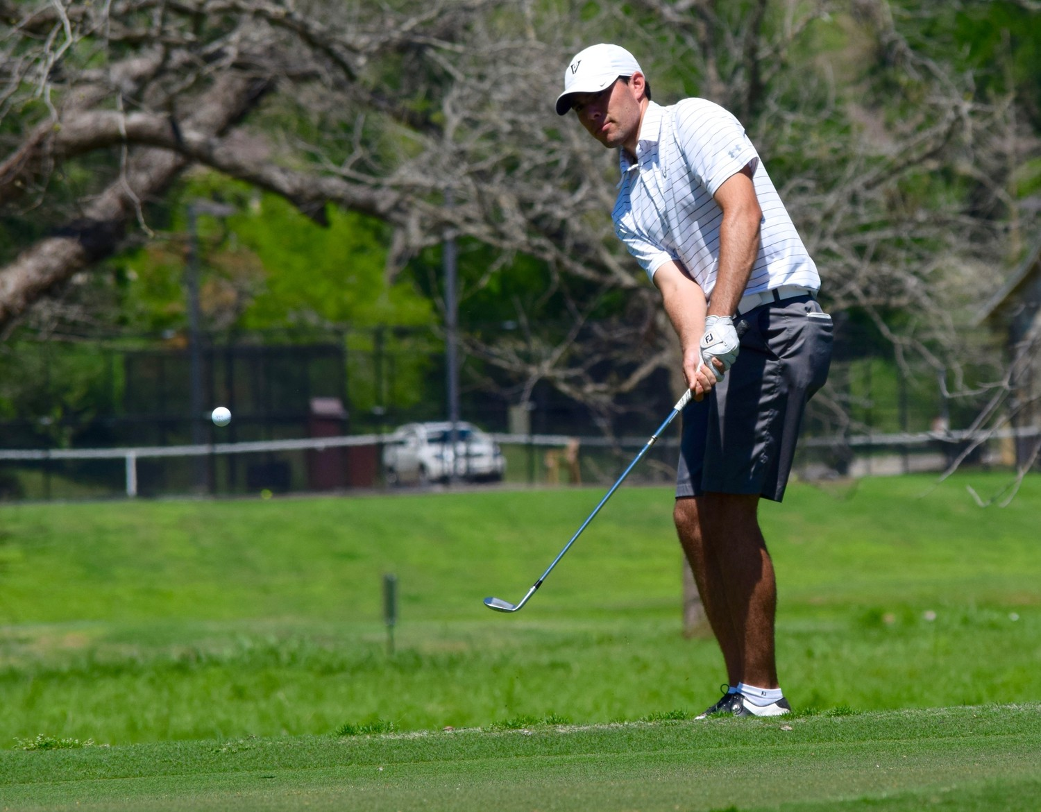 Vandegrift's Brandon Hoff had rounds of 74-75 and finished in a tie for eighth place at the District 25-6A tournament.