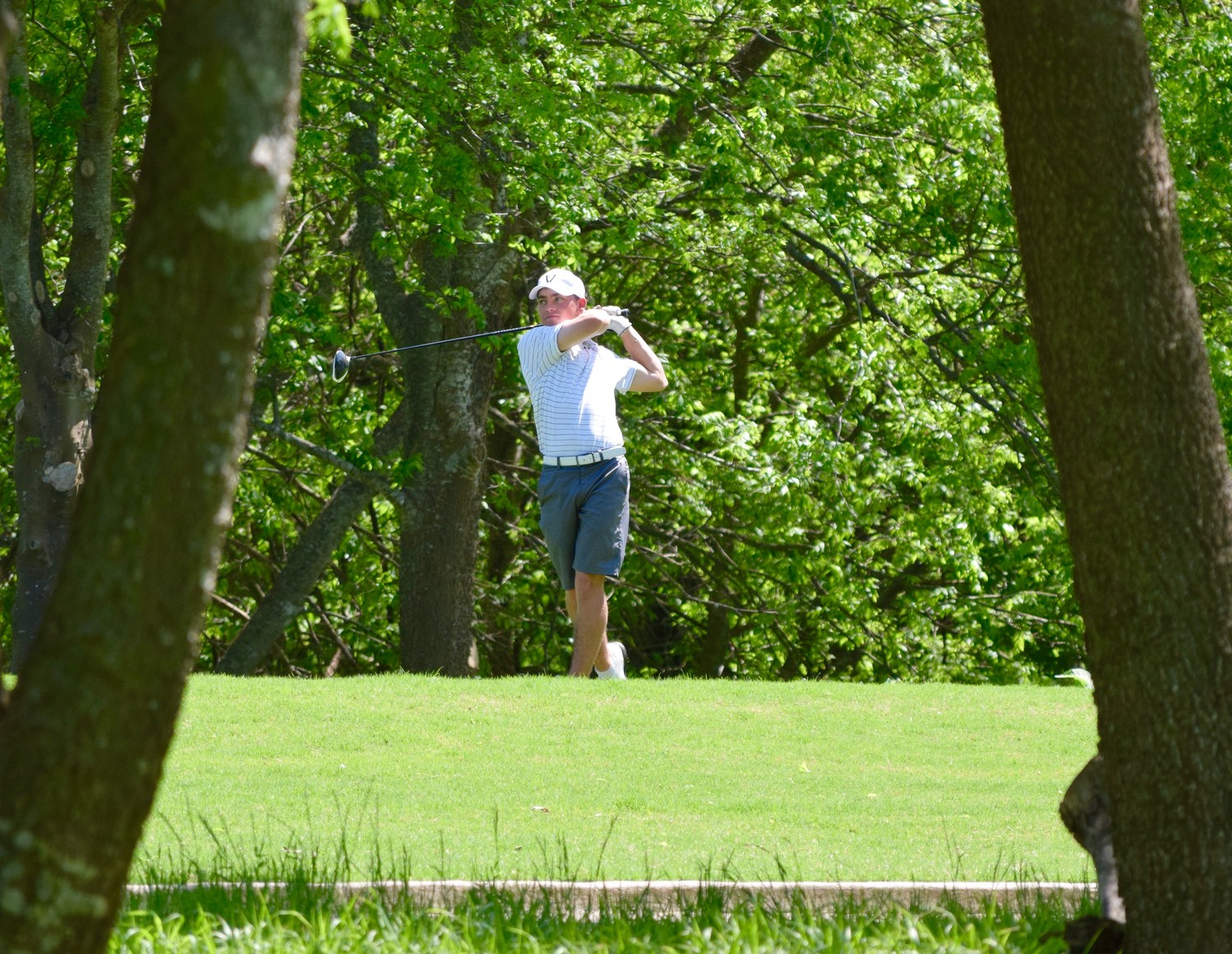 Golfer, 80, hits hole in one on Norfolk course