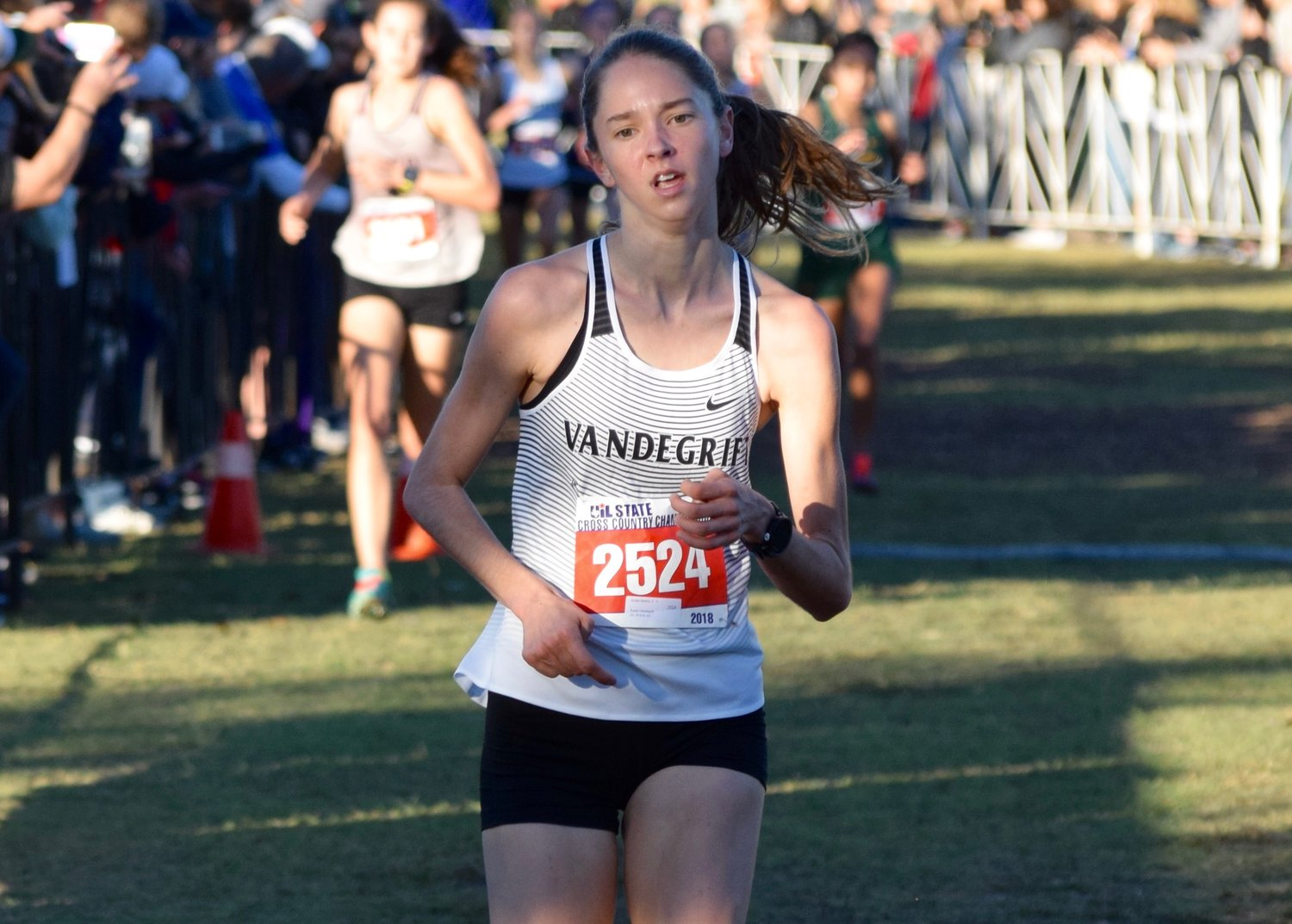 Vandegrift junior Jordan Mathis finished in eighth place with a time of 17:26.14 at the State Cross Country meet Saturday in Round Rock.