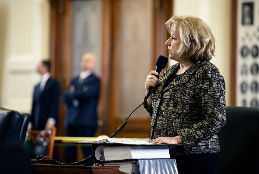 Sen. Jane Nelson, R-Flower Mound, introduces SB 3 on the Senate floor on Mar. 4, 2019.