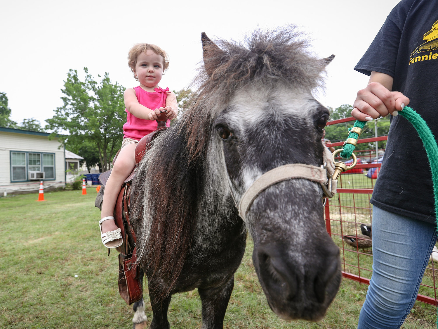 Attendees enjoyed a number of family-friendly rides, events and games at the Leander Old Town Street Festival on May 18, 2019.