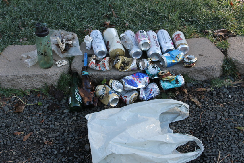 This garbage was collected in Priest Point Park in Olympia on Thu., Jan. 21, 2021 -- in just a few minutes.  Most of it was recyclable - and was put into the recycling stream at home.