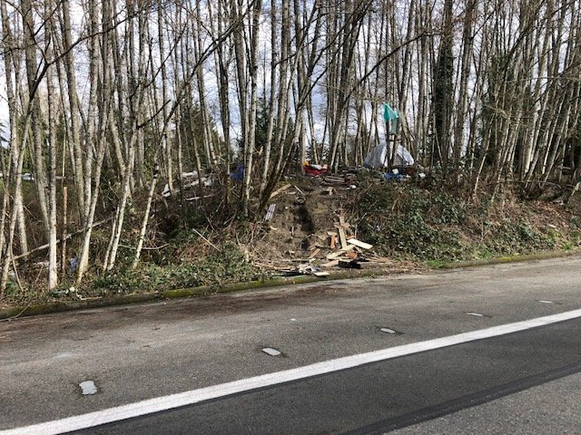 Another example of trash strewn along the north side of Wheeler Ave. SE in Olympia on March 9, 2021