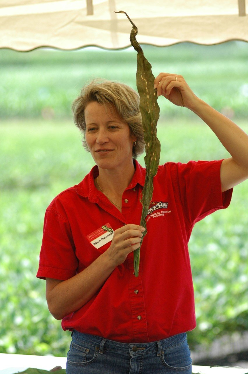 Professor Alison Robertson of Iowa State explains how to diagnose corn diseases in Boone County.