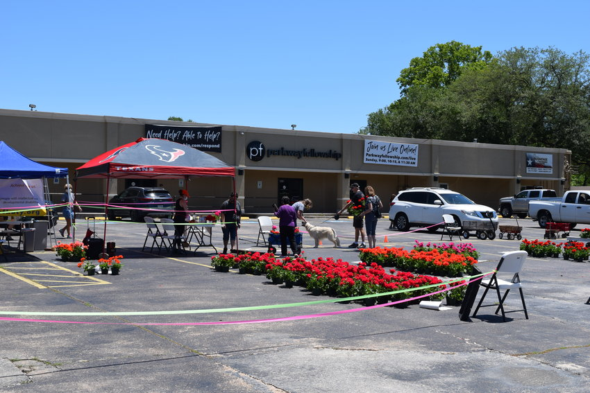 The Arc of Katy held a geranium sale last week to raise funds for its operations and help out a small business from Fredericksburg which relies on sales of flowers through school fundraisers which have been cancelled this year.