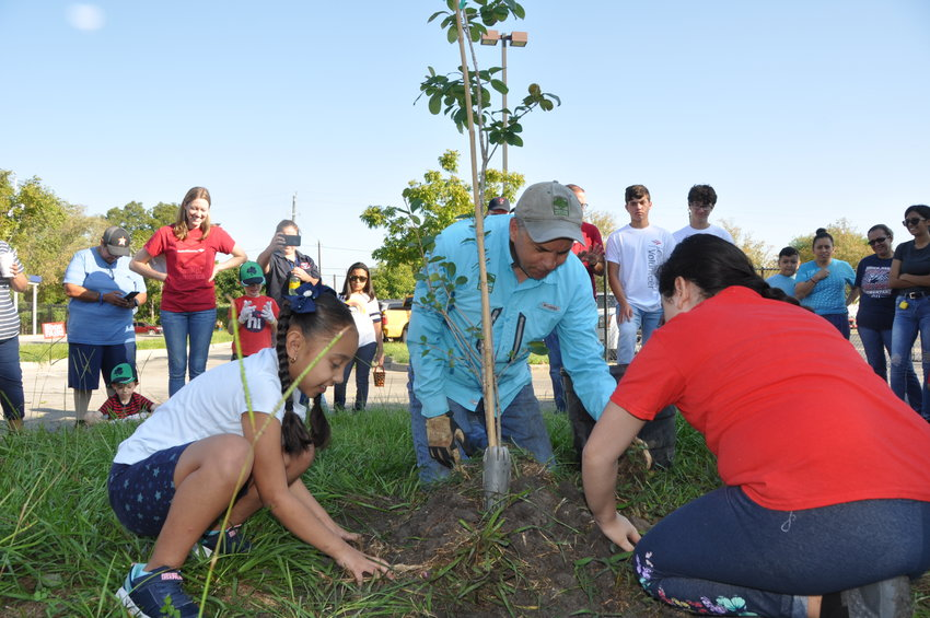 Trees for Houston is a nonprofit operating in Greater Houston, including Katy, that encourages the planting of trees through community planting events, donations of trees to municipalities and other activities.