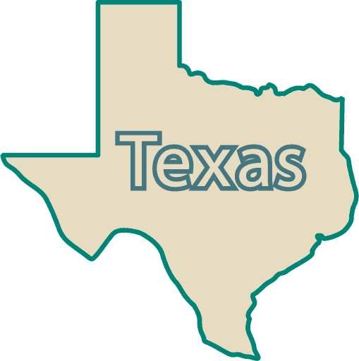 Texas voters will get the opportunity to decide on eight proposed constitutional amendments for the state this November.