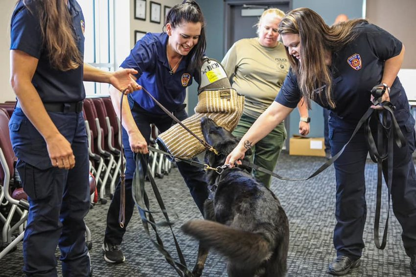 Trainees at Harris County Emergency Services District 48 familiarize themselves with interactions with a K9 officer during a first aid course for dogs. The course is designed to help first responders support K9 officers that may be wounded or exposed to harmful substances during the line of duty.