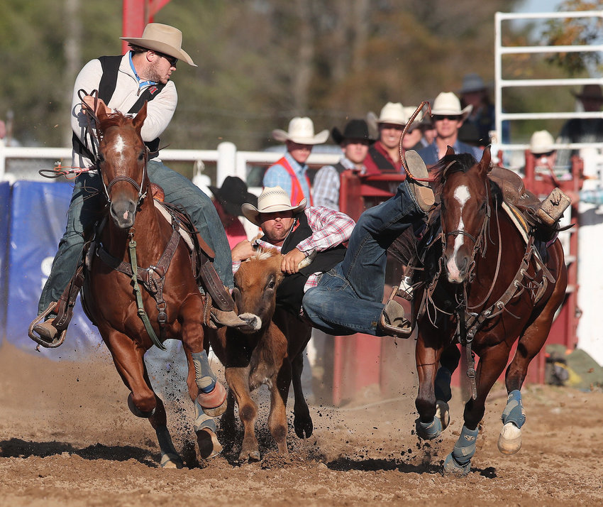 EMCC's Marcus Theriot participating in Steer wrestling. He won the steer wrestling competition for the weekend - taken on Saturday during the Short Go (championship)