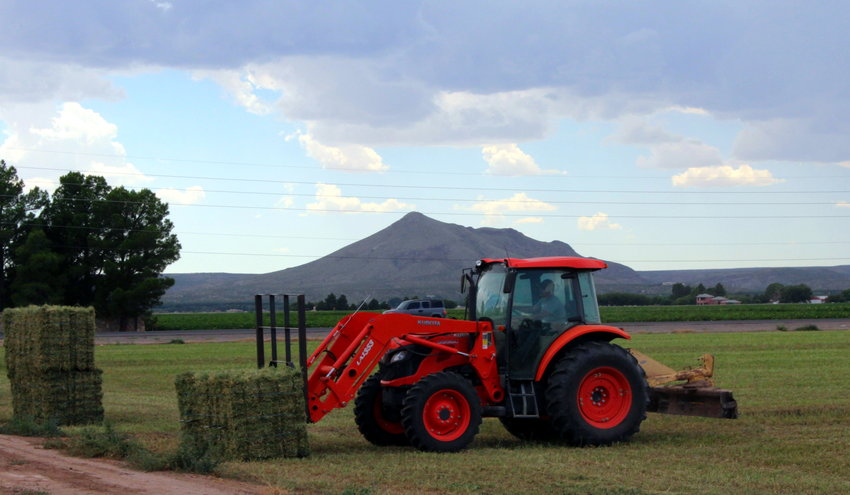 The New Mexico Hay and Livestock Co. harvest alfalfa in the Mesilla Valley.