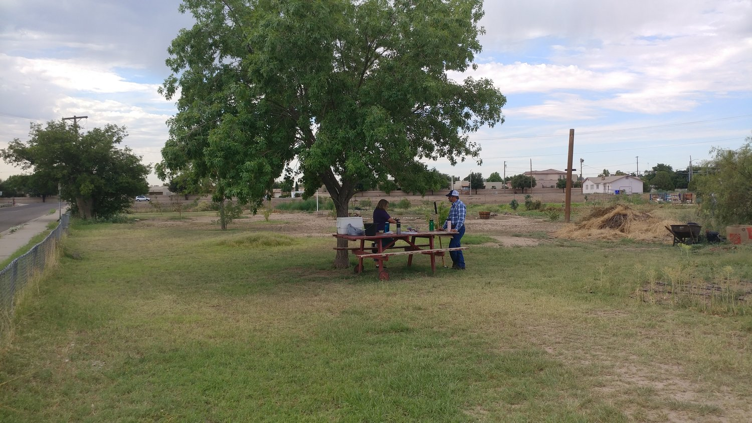 New Mexico State University/Doña Ana County Cooperative Extension Service Ag/Horticulture Agent and county master gardener program coordinator Jeff Anderson and urban garden volunteer Nancy Tipton chat at a picnic table beneath an ash tree at the urban garden on El Paseo Road near Las Cruces High School.