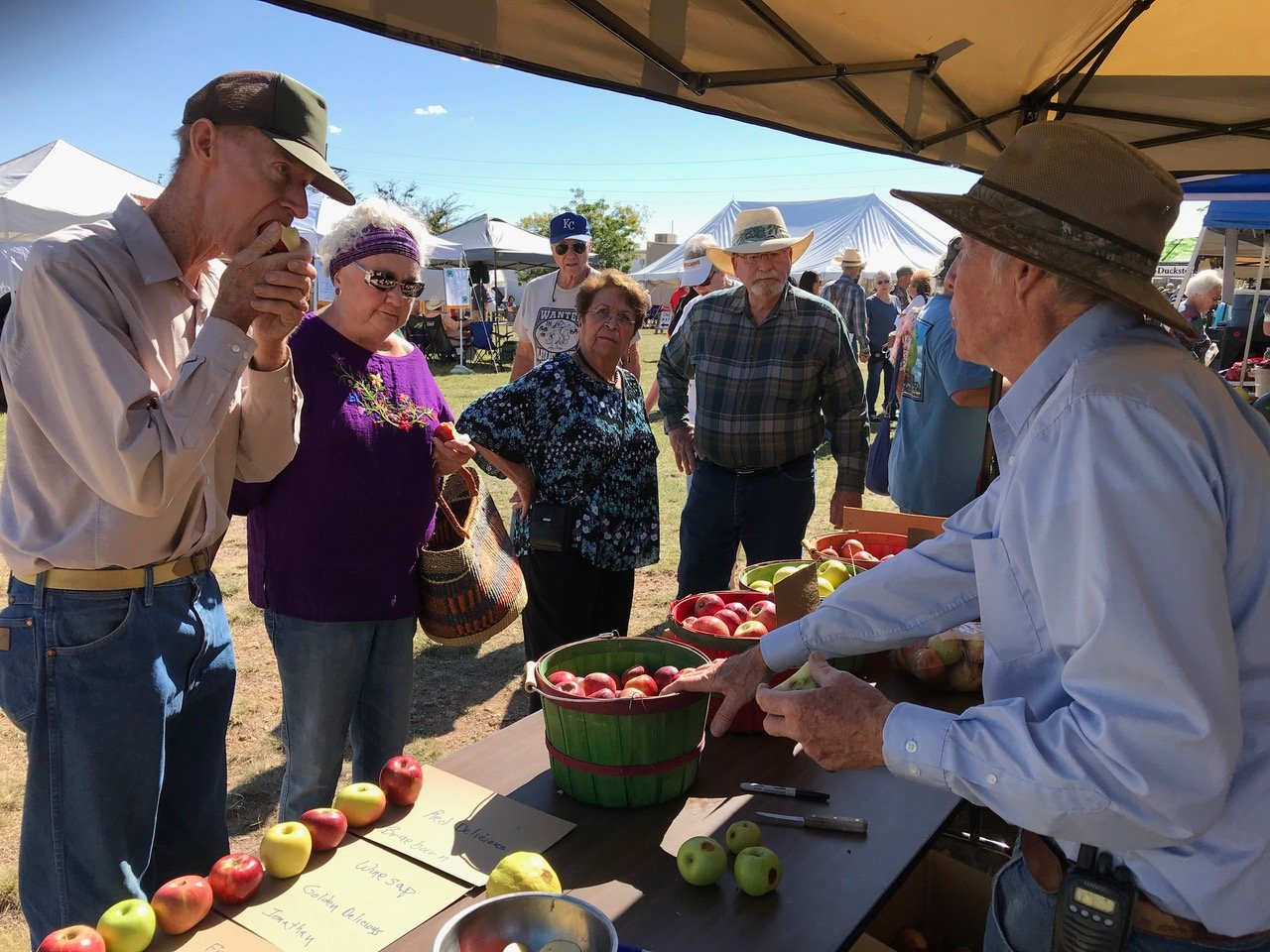 Plenty of local apples, a staple of every excellent harvest festival, will be available at the Mimbres Valley Harvest Festival.