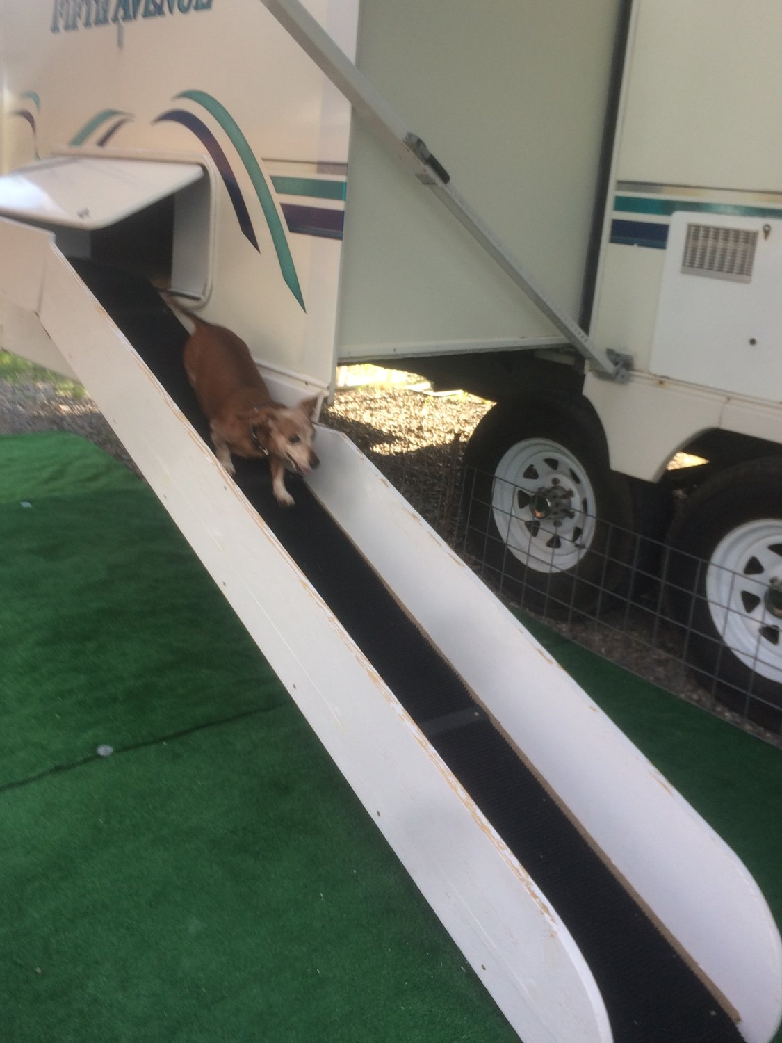 RVing with their dogs is more convenient for Gary and Linda Wee, and more fun for Storm and Breeze, because of this doggy door and ramp, which was built by Gary.