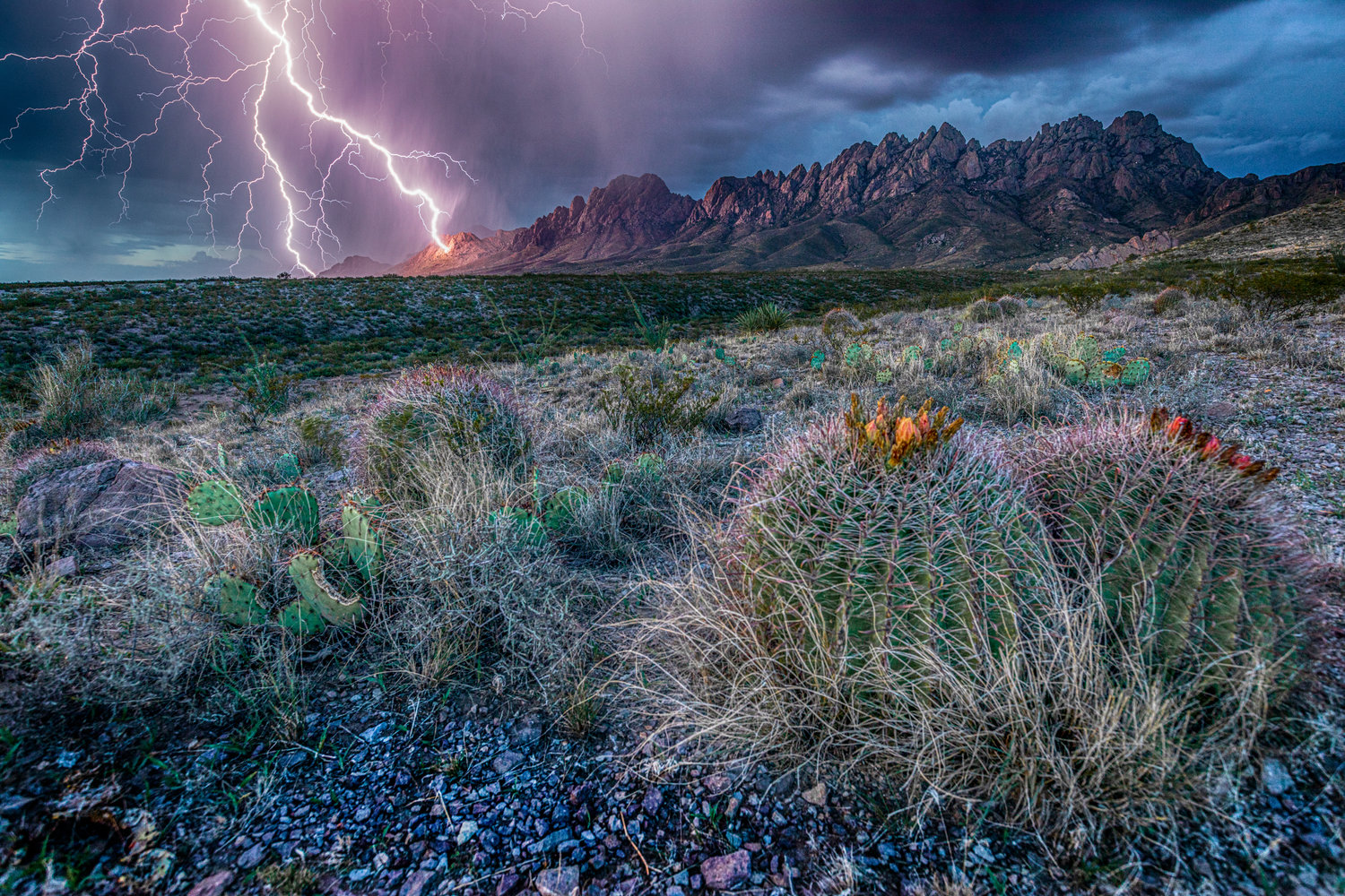 Organ Mountains and surrounding desert by Las Cruces photographer David Turning