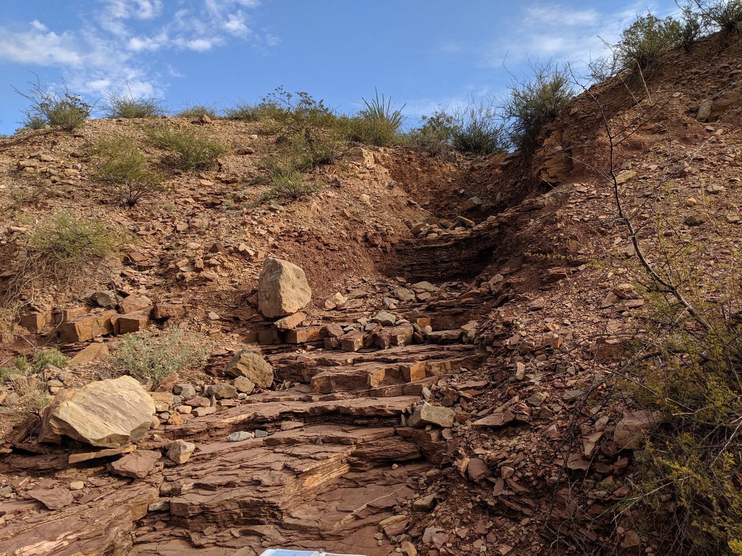You can see some spectacular examples of erosion and nature at work along the hike up to the Discovery Site.
