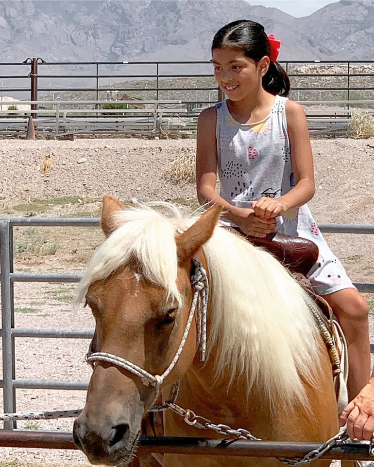 3)Pony rides are one of the many popular children's activities.