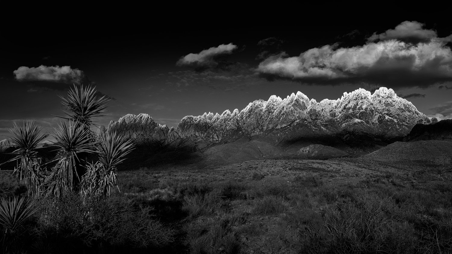 On a snowy, icy Saturday, I headed out on Dripping Springs Road to one of my favorite spots and took a photograph of the snow-capped Organs. I shot and processed the file in color, then decided to look at a black and white conversion.