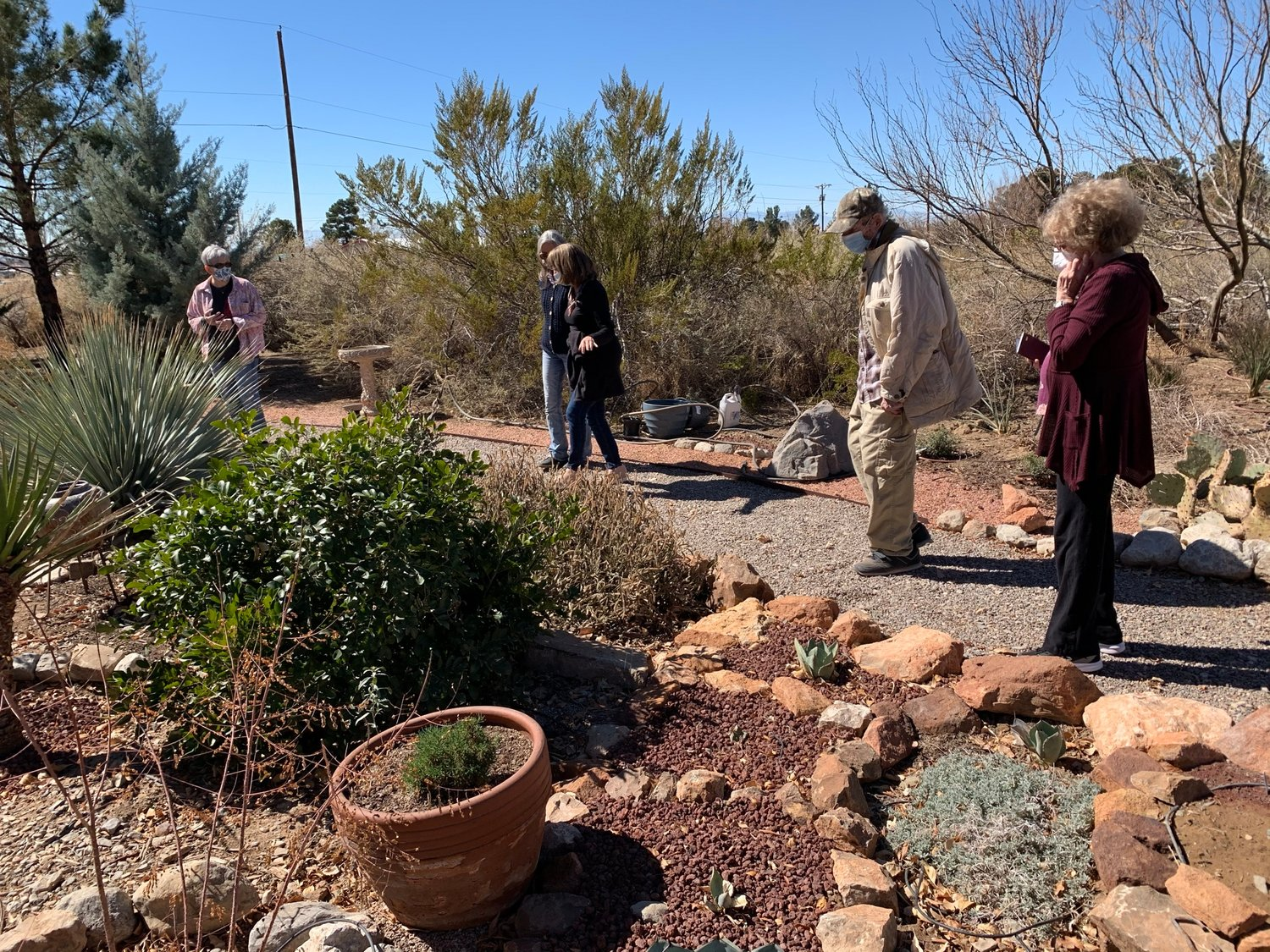 LeAnne Roberts will talk about her experiences developing her Alamogordo native plant garden on April 10.