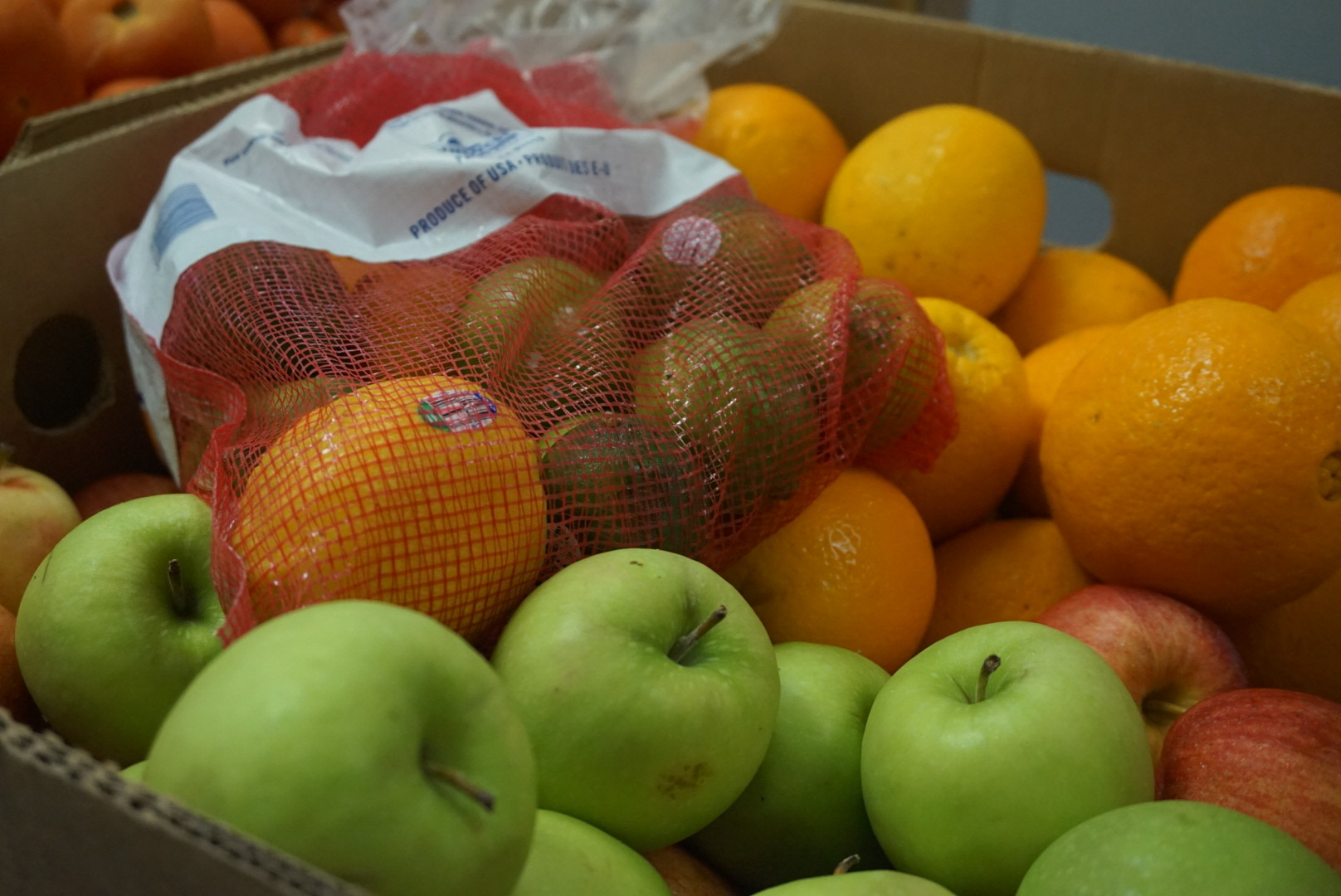 BEAM\'s Grace Garden brings fresh produce, peace to families in need ...