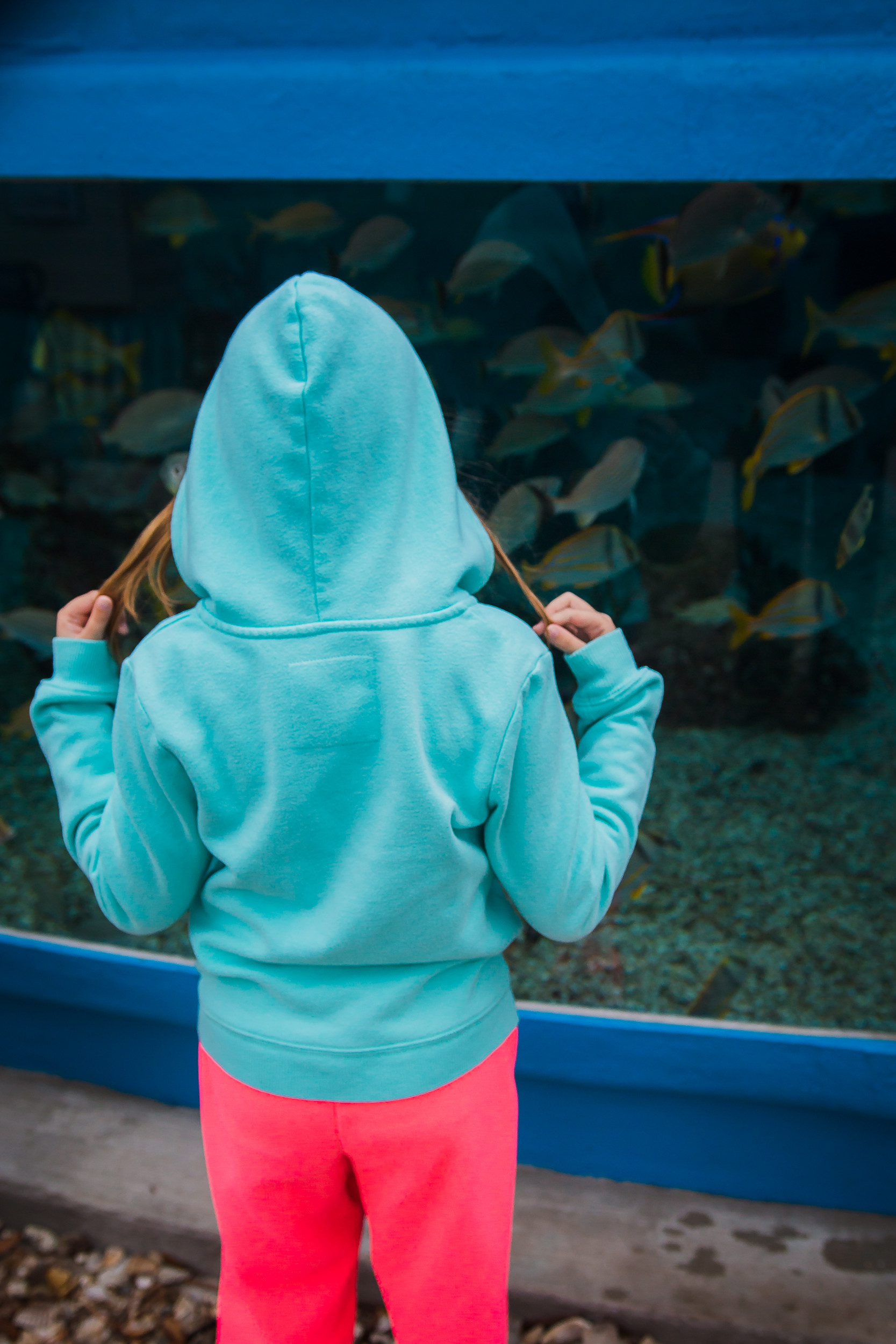 Kids enjoy seeing and interacting with the 32 Florida species and over 300 marine animals that are housed within the St. Augustine Aquarium.