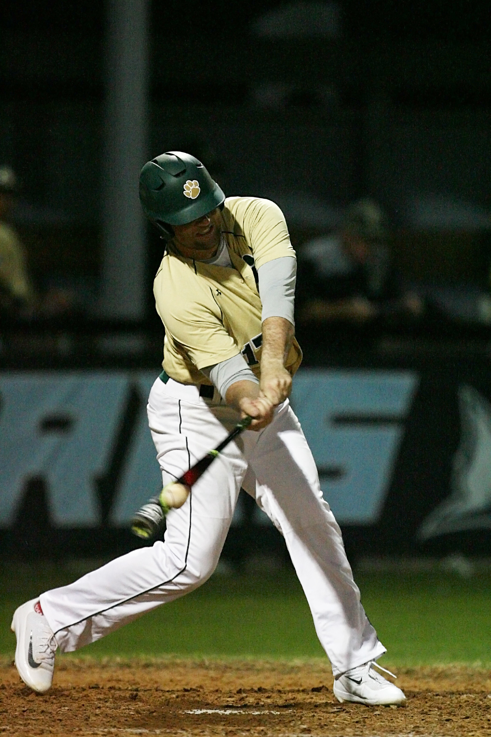 Nease's Leighton Alley, #17, makes contact at the plate.