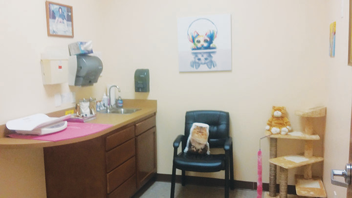The kitty comfort exam room at the Nease Animal Hospital.