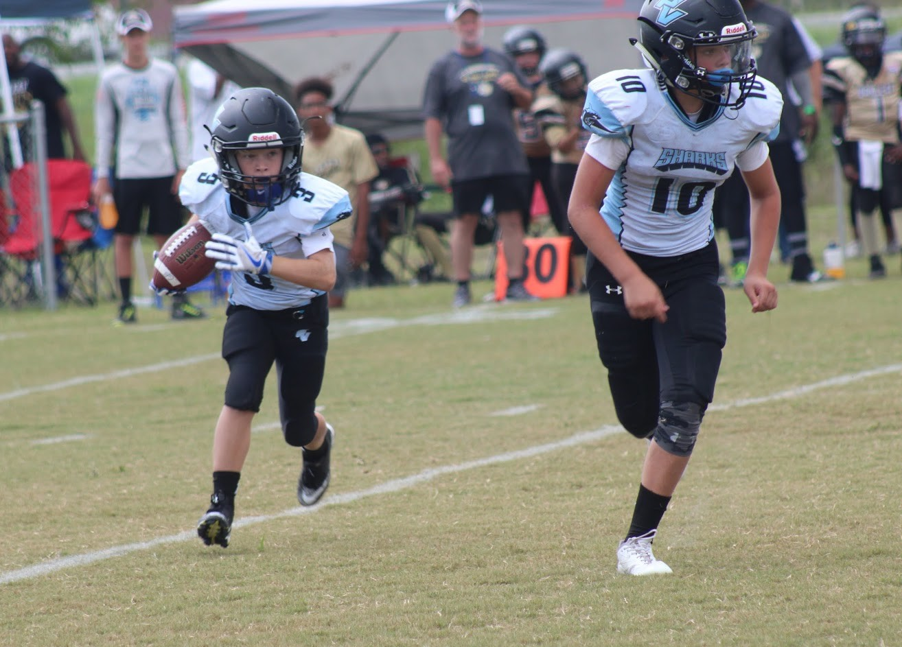 Pee wee football com