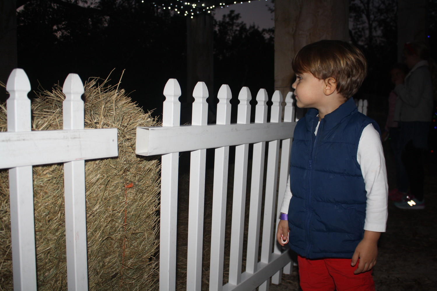 A child takes in the Village's live manger scene.